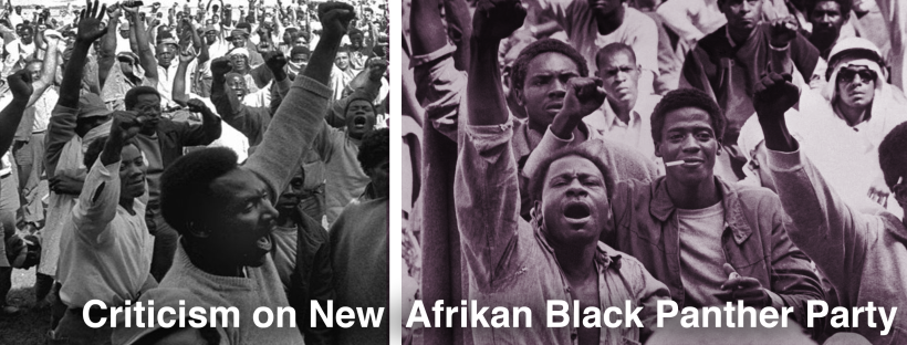 New Afrikan Black Panther Party.png